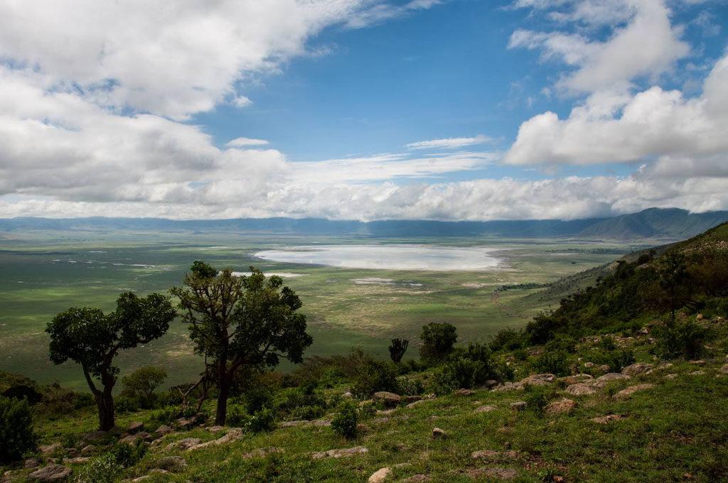 Ngorongoro, safari, Tanzania