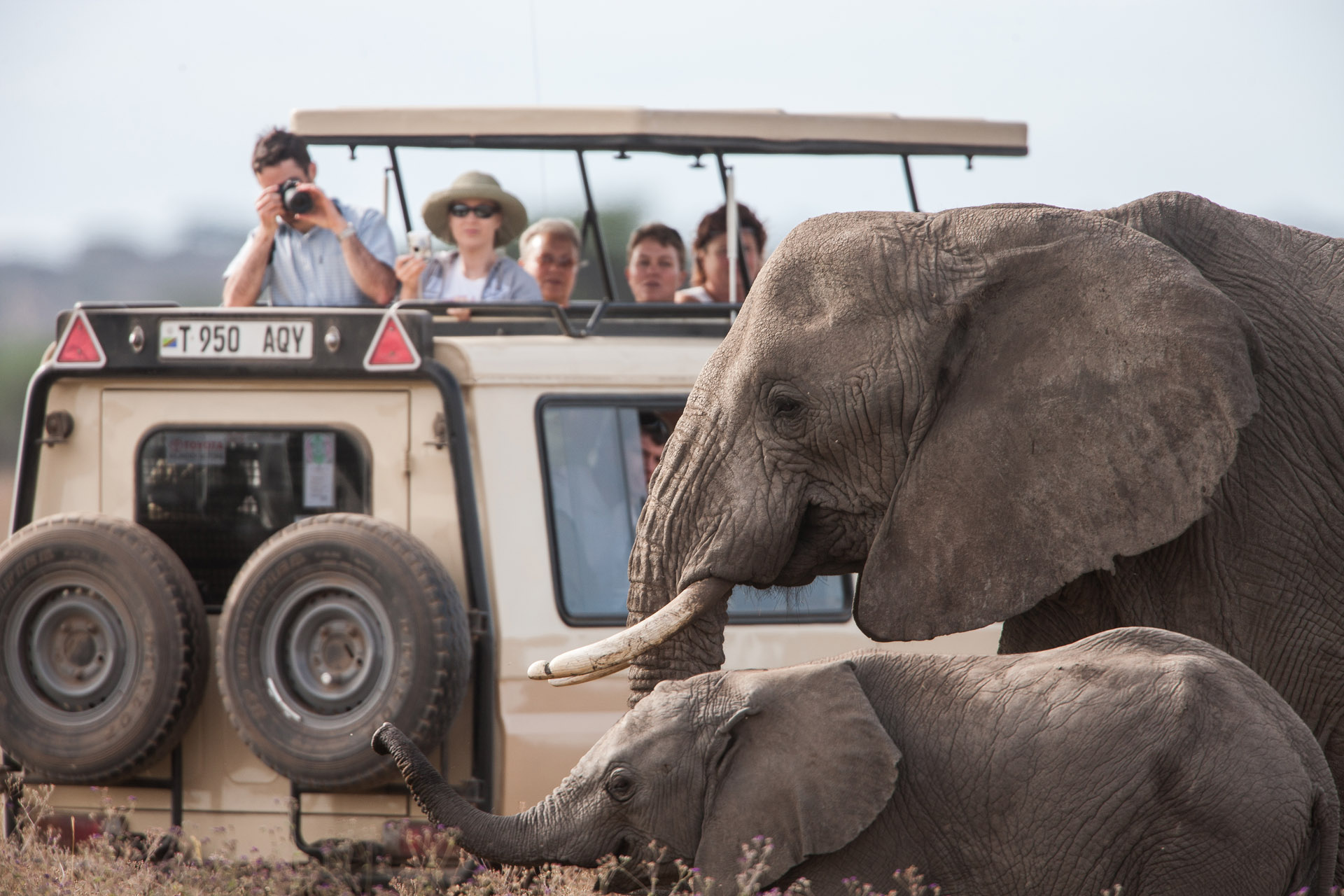 Deep wildlife, Safari Tours Tanzania, safari Crew
