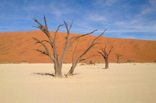 Sossusvlei-Onkoshi - safari in Namibia