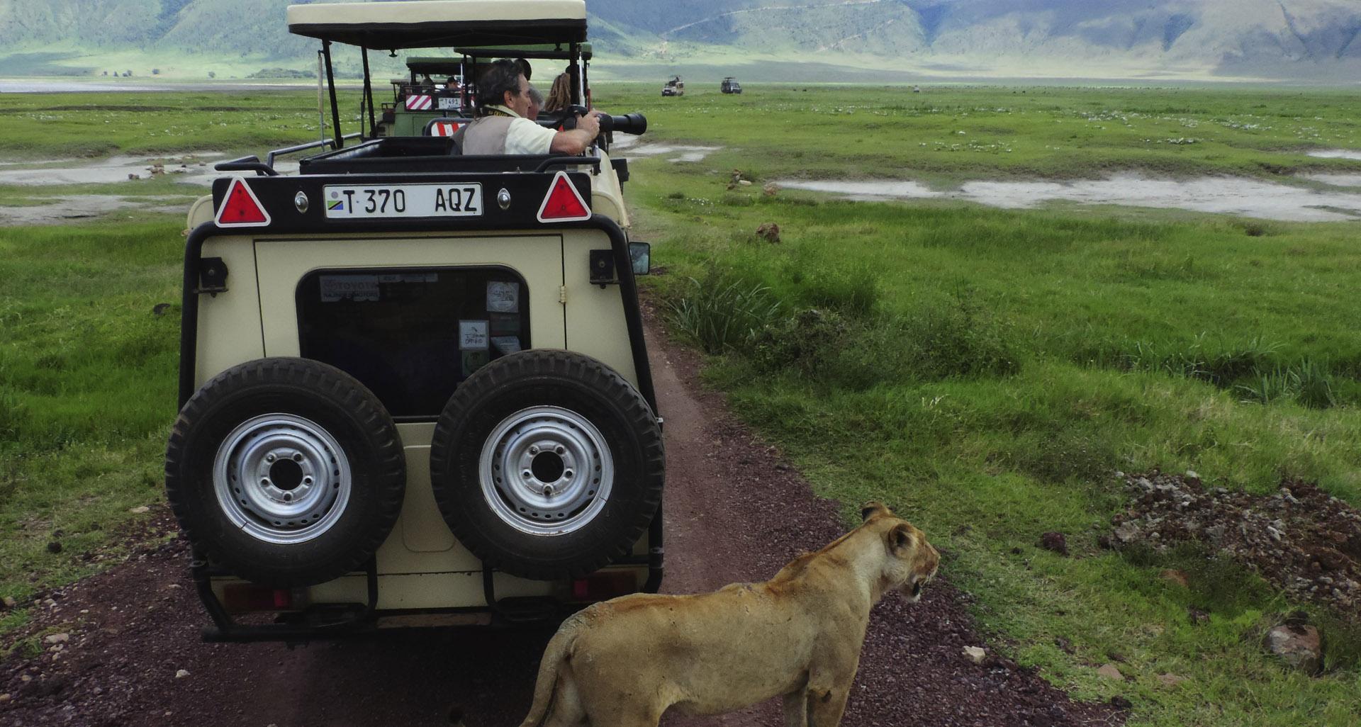 Ngorongoro crater, Safari Crew Tanzania, safari organizing
